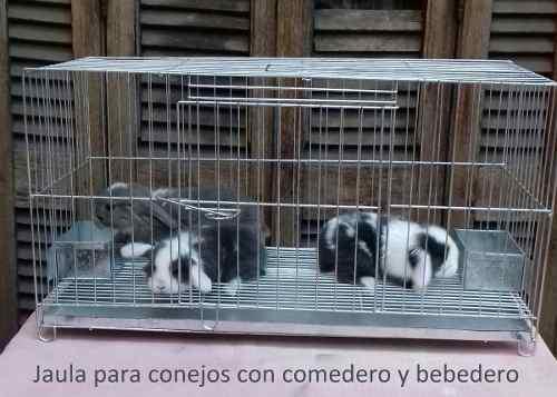 Jaula Para Conejos Con Comedero Y Bebedero Incluídos!!! 0
