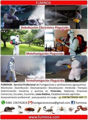 Fumigaciones ecológicas (control total)