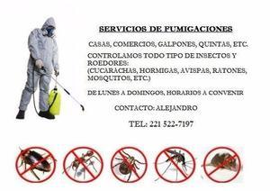 Fumigaciones la plata: eliminamos todo tipo de insectos,