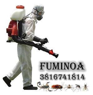 Fumigaciones - control de plagas (viviendas - empresas -