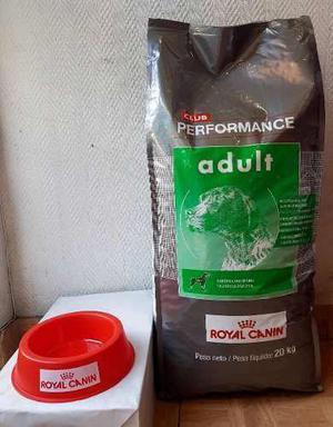 Performance adulto x 20 kg + regalo - mascotas el molino
