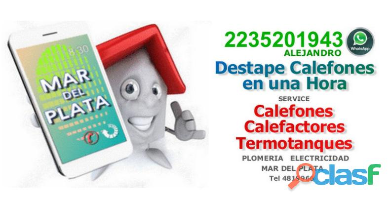 Destape limpieza serpentina calefon mar del plata 2235201943