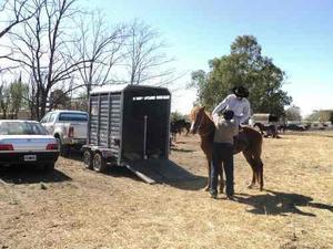 Trailer para dos 2 caballos