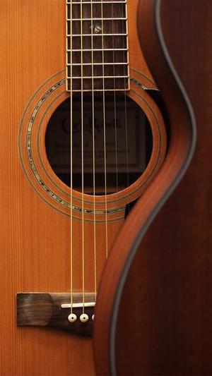 Clases de guitarra eléctrica y clásica.