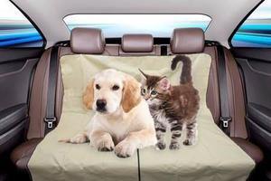 Cobertor asientos impermeable perros y gatos - caba