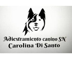 adiestramiento canino SN
