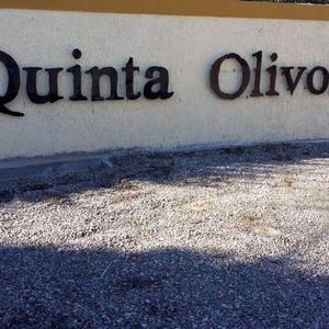 Barrio privado quinta olivo