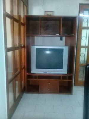 Vendo tv. 29 pulgadas con mueble de tv rack