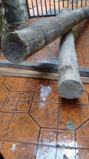 Vendo 2 troncos de eucaliptus