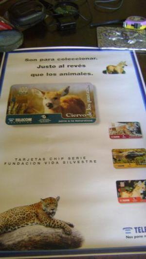 Coleccionismo tarjetas telefonicas afiche de telecom ciervo