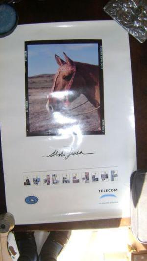 Coleccionismo tarjetas telefonicas afiche telecom aldo sessa