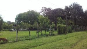 Casa quinta de 75 x 75 m. gran espacio verde, arboles