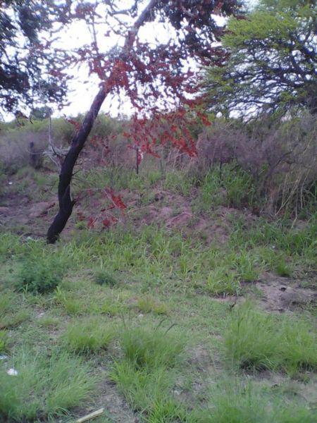 Alq quinta de 30 x 200 mts.casa chica. a 2,5 kms de mercedes