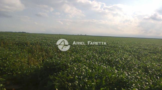 Agrícola 188 has en venta- rafael garcia