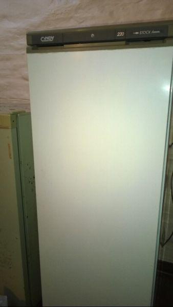 Freezer cindy 220