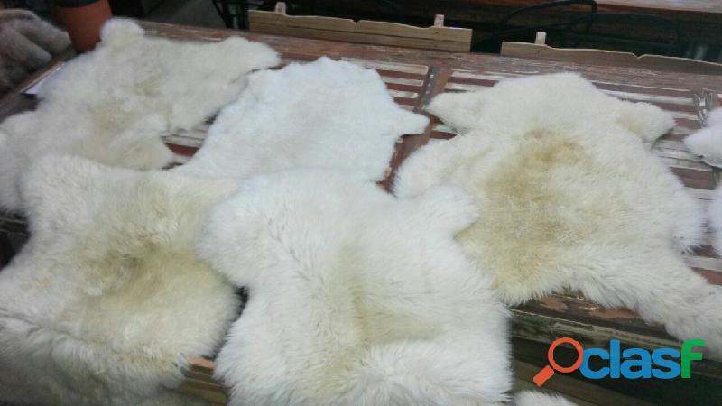 Cueros de oveja, muflones originales