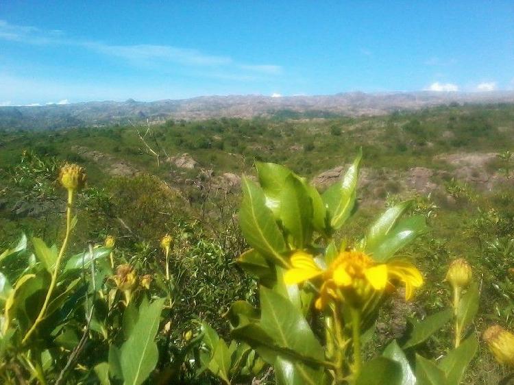 Lote rural 3700 m2, excelente vista, vertientes y bosque