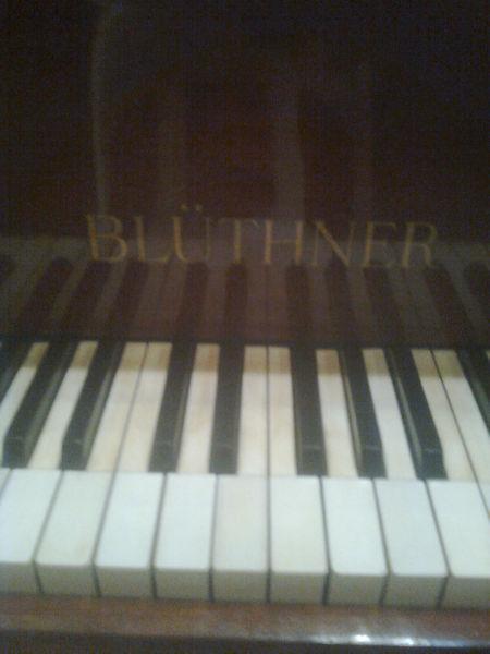 Afinador de piano, cap y prov, amp/exp, buenos aranceles.