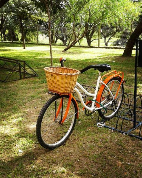 Bicicleta tipo de paseo.