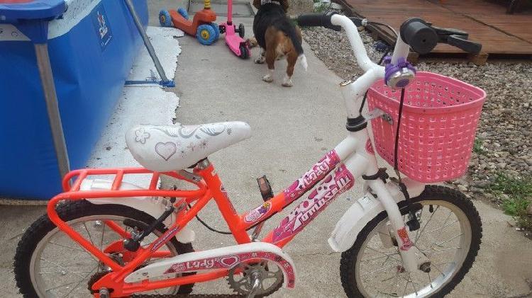 Bicicleta rodado 12 más monopatín vegui