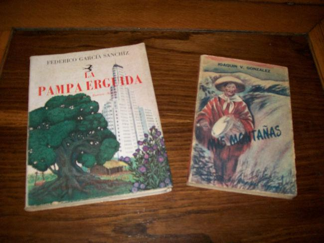 Libros novelas la pampa erguida o mis montañas