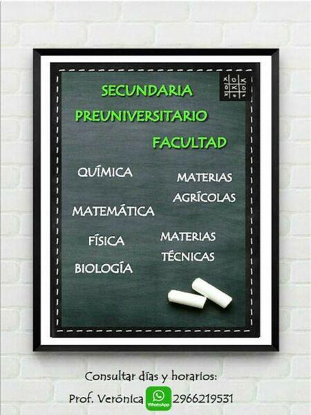 Clases particulares ayuda escolar matemáticas física
