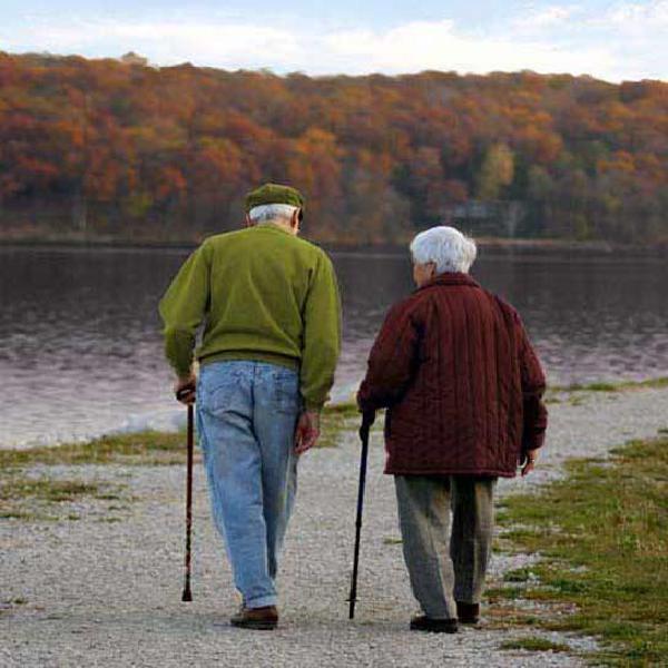 Asistente de adultos mayores personas con discapacidad y