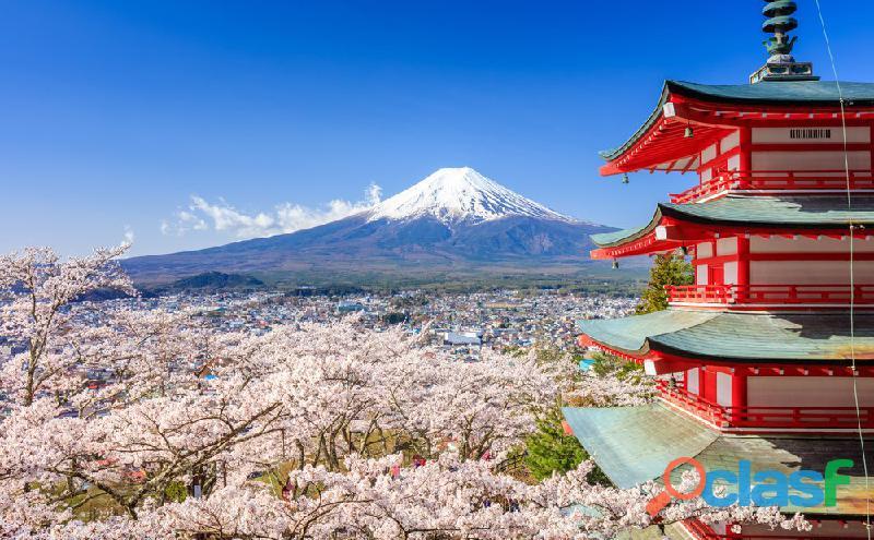 Clases particulares de japonés online o presencial.