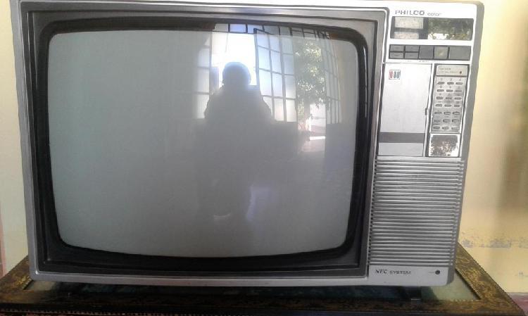 Vendo televisor a color, 21 pulgadas, a color