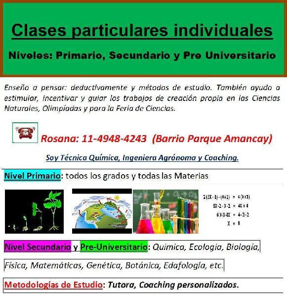 Clases particulares en Pilar:clases