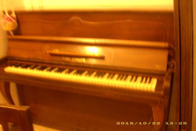 Piano vertical karl schultz