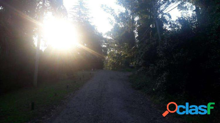 lote bosque peralta ramos los incas entre comechingones y los quichuas 2