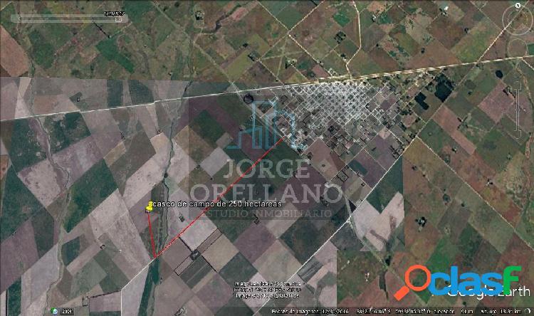 Vendo campo agricola de 250 hectareas en san cayetano