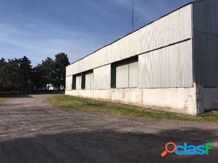 Mancisidor propiedades alquila: predio de varios galpones y zonas de estacionamiento de camiones - ideal empresa logística