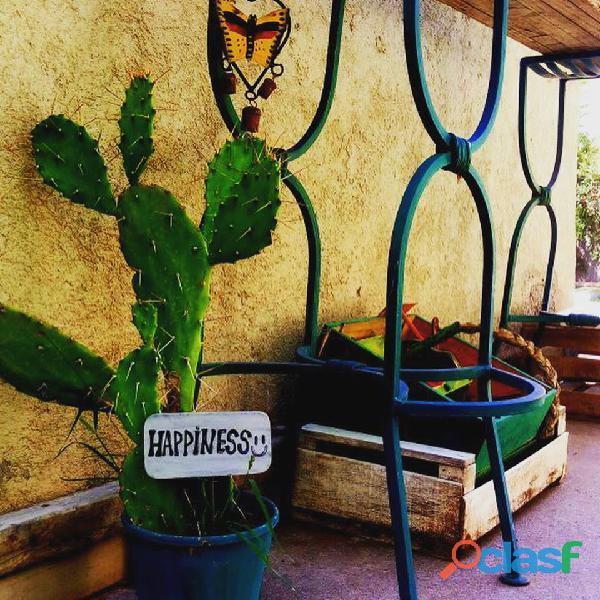 Hospedaje 2 Habitaciones con baño privado adosadas a casa de campo en Chacras de Coria 11