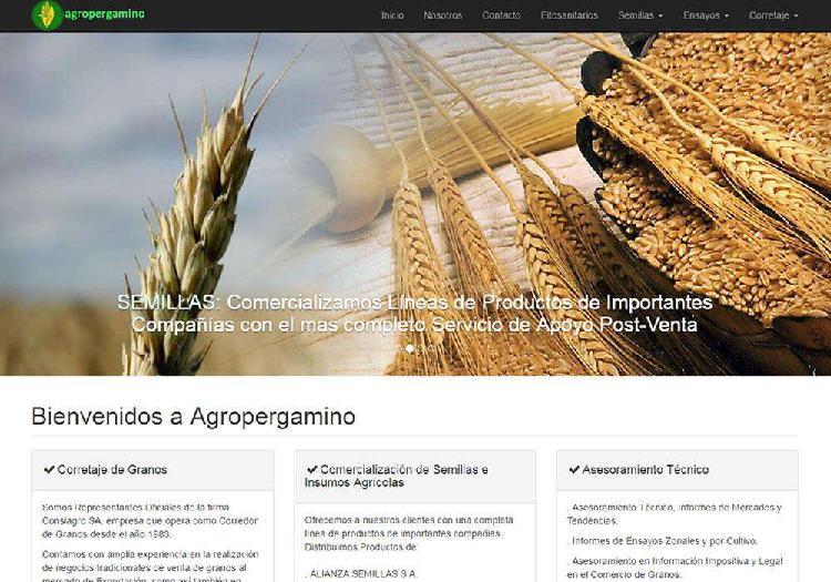 Diseño, hosting y mantenimiento de sitios web