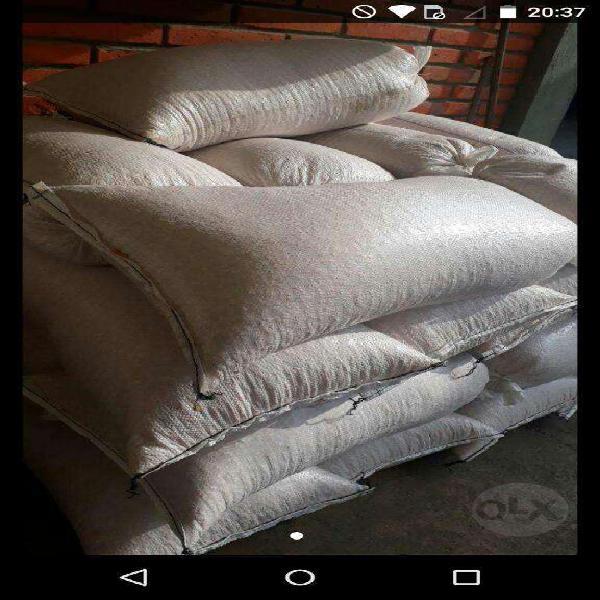 Maiz entero (bolsas de 40 kg)