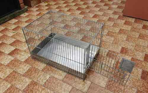 Jaula inoxidable conejo cobayo hamster gato impecable
