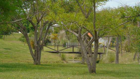 Chacras de la reserva en Campana