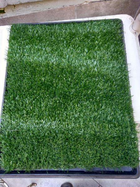 Bandeja sanitaria de pasto outdoor carpet max para perros
