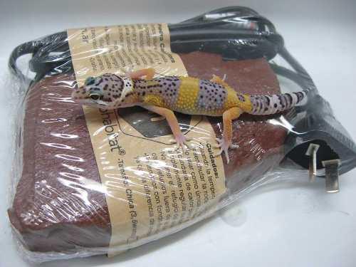 Piedra calefactora chica microhabitat/ con 2porc aliment s/c