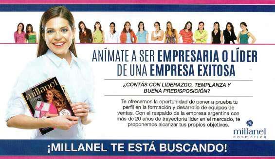 Distribuidora millanel tucumán centro en San Miguel de