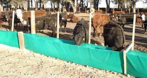 Comederos y bebederos para ganado pollos borregos agro campo