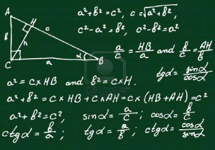 Profesora de Matemáticas y Física