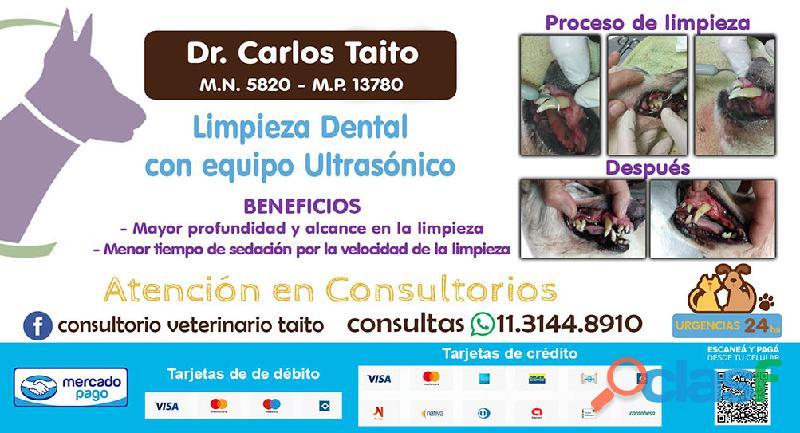 Limpieza dental con ultrasonidos para perros y gatos