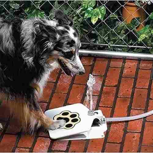 Bebedero fuente de agua para mascotas