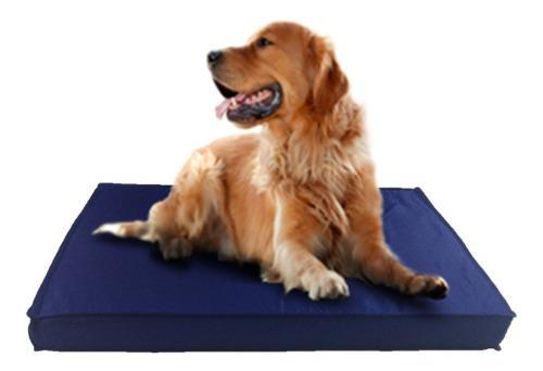 Colchón cama perros placa de espuma antidesgarro 1.10x70