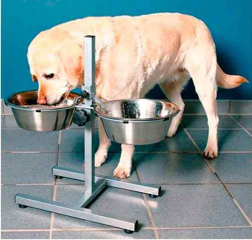 Comedero elevado doble perros grandes regulable bebedero