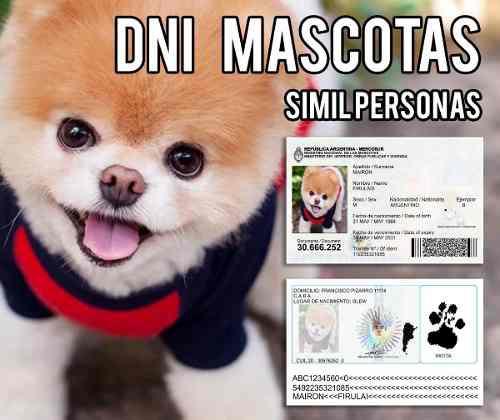 Dni cédula credencial tarjeta para mascotas - perros gatos