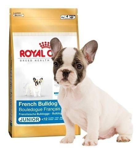 Royal canin bulldog frances junior 3 kg - cachorro
